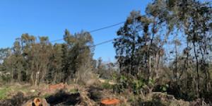 Venta  Punta del Este El Tesoro