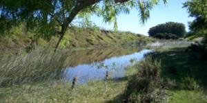 Venta  Punta del Este Minas