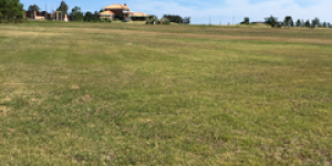 Venta  Punta del Este Punta Ballena