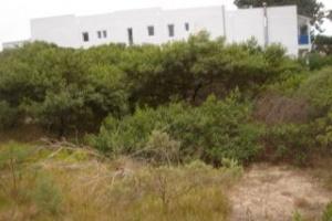 Venta  Punta del Este Montoya